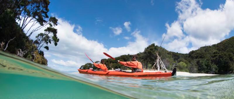 ingles Nueva Zelanda verano 2020