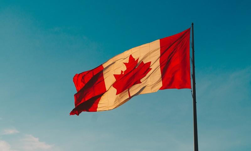 Ingles intensivo para profesionales en Canada Elduaien