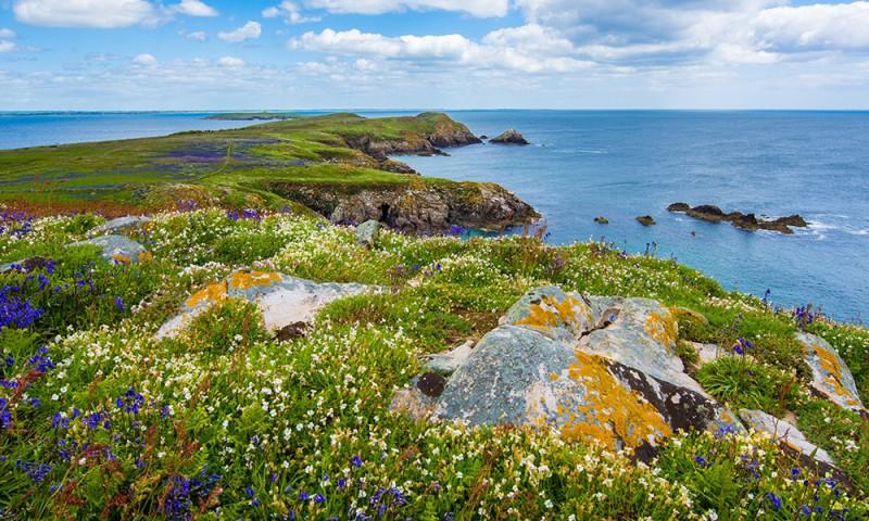 Learn English while working as Au Pair in Ireland. Elduaien